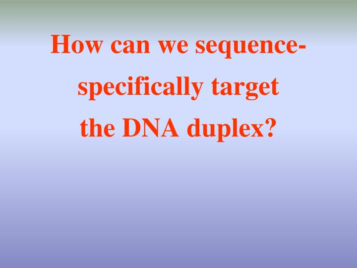 How can we sequence specifically target the dna duplex