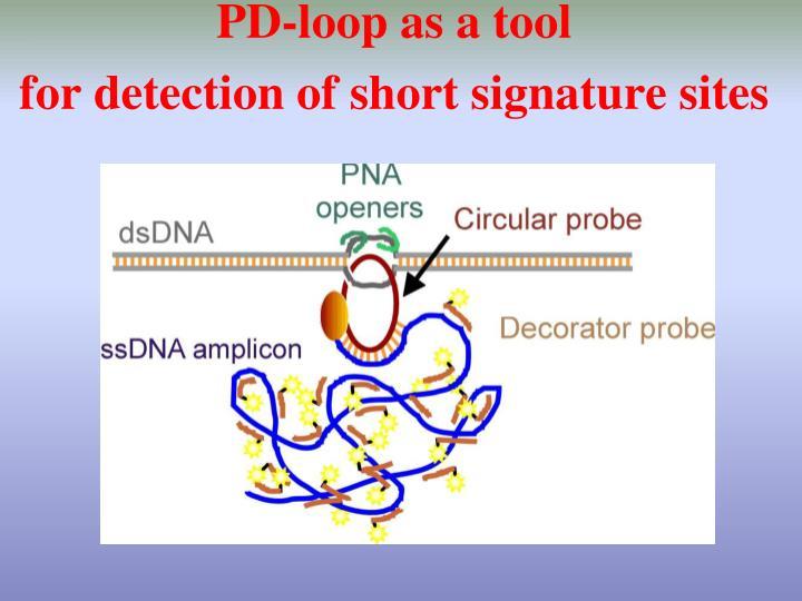 PD-loop as a tool