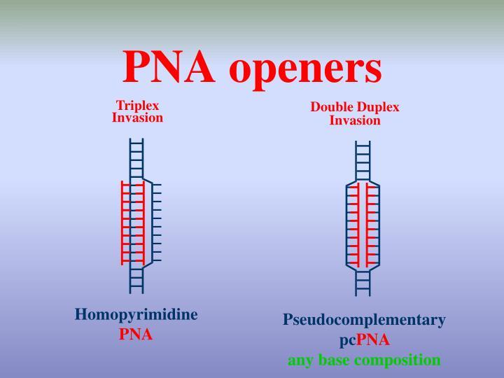 PNA openers