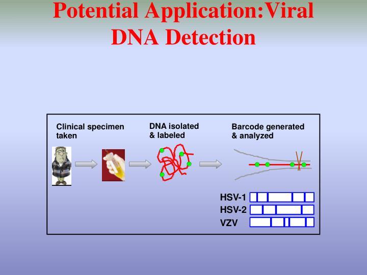 Potential Application:Viral DNA Detection
