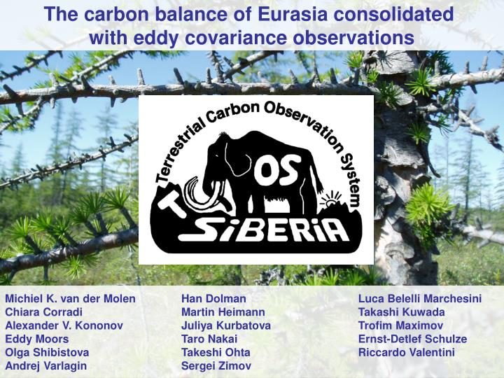 The carbon balance of Eurasia consolidated