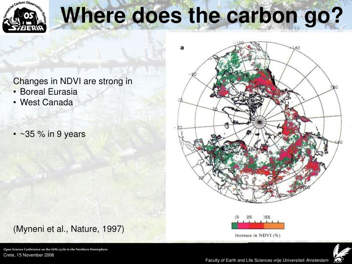 Where does the carbon go?