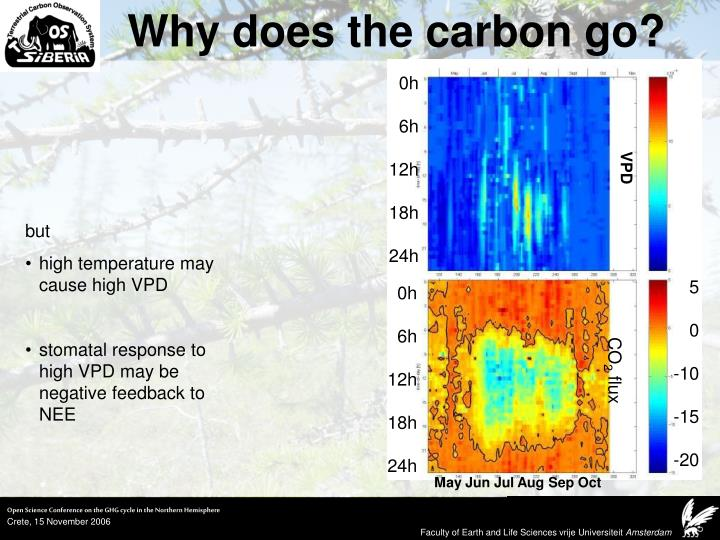 Why does the carbon go?