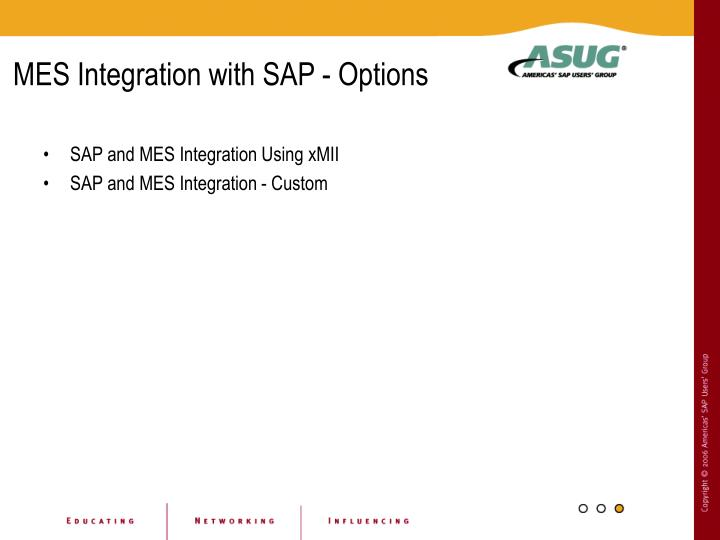 MES Integration with SAP - Options