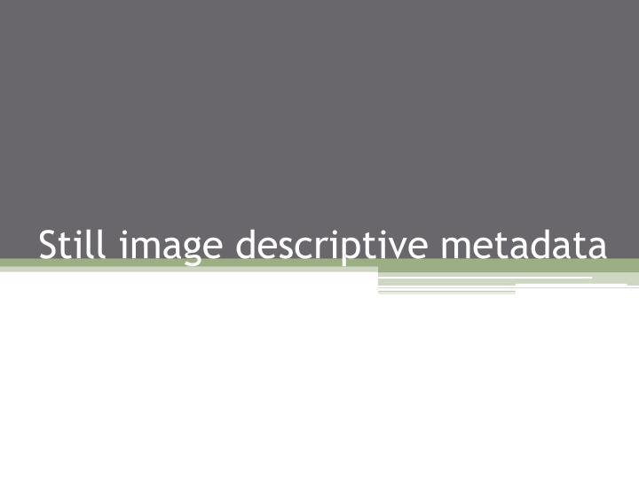 Still image descriptive metadata
