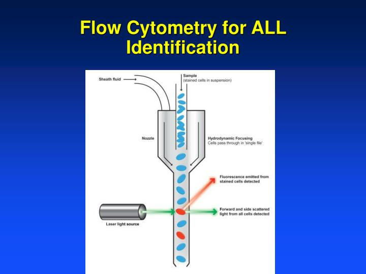 Flow Cytometry for ALL Identification