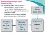 numerical forecasting of ocean biogeochemistry