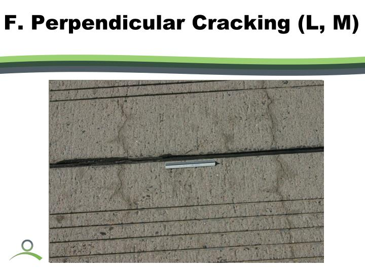 F. Perpendicular Cracking (L, M)