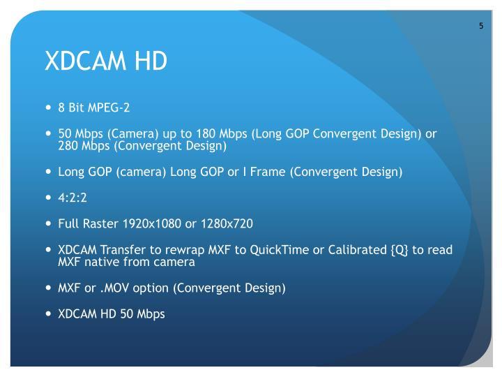 8 Bit MPEG-2