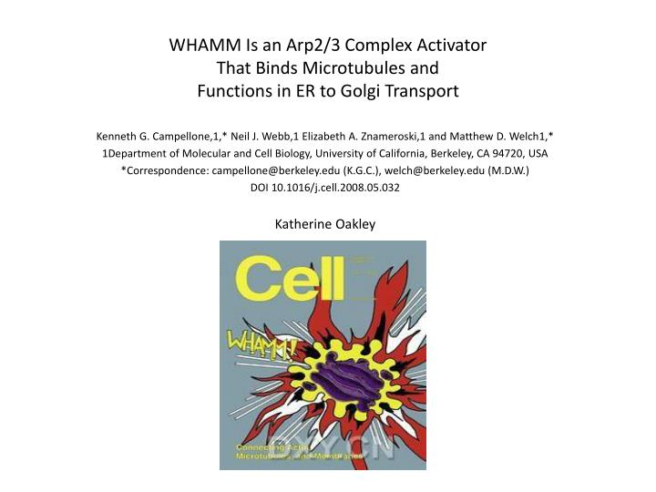 whamm is an arp2 3 complex activator that binds microtubules and functions in er to golgi transport n.