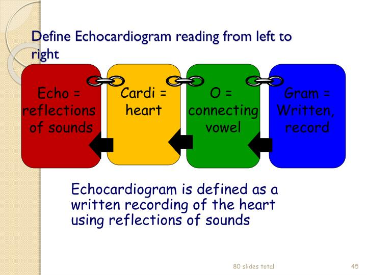 Define Echocardiogram reading from left to right