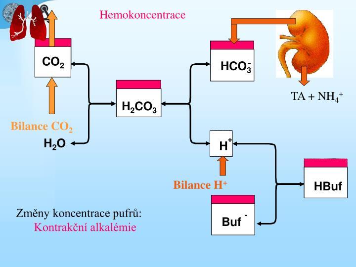 Hemokoncentrace
