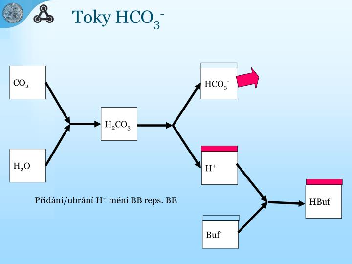 Toky HCO