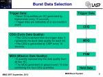 burst data selection