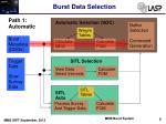 burst data selection3