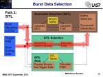 burst data selection4