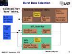 burst data selection6