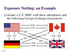 exposure netting an example