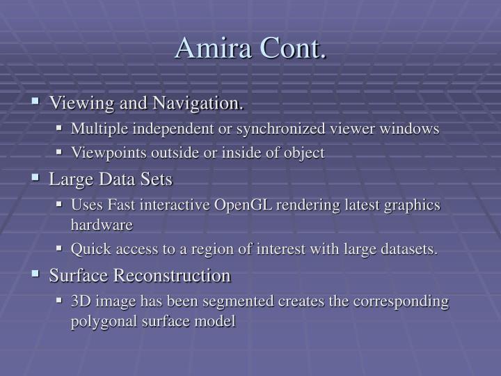 Amira Cont.