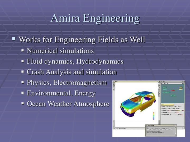 Amira Engineering