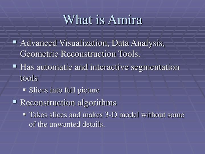 What is Amira