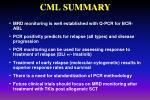 cml summary