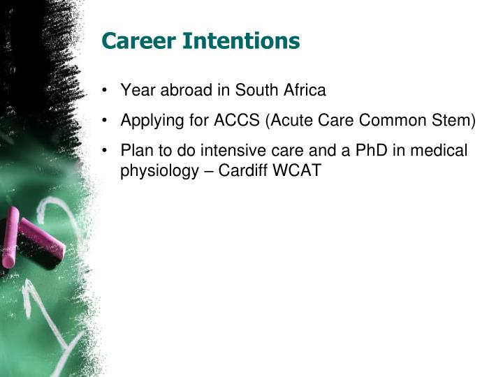 Career Intentions