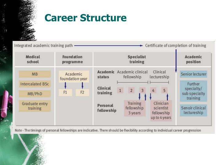 Career Structure