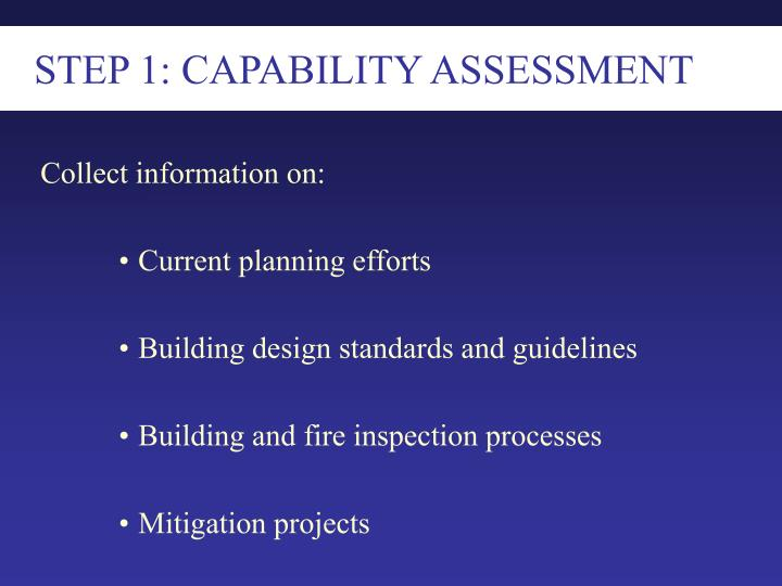 STEP 1: CAPABILITY ASSESSMENT