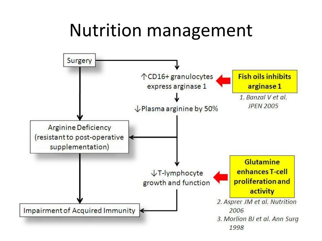 PPT - Impact of nutrition care in surgery PowerPoint Presentation