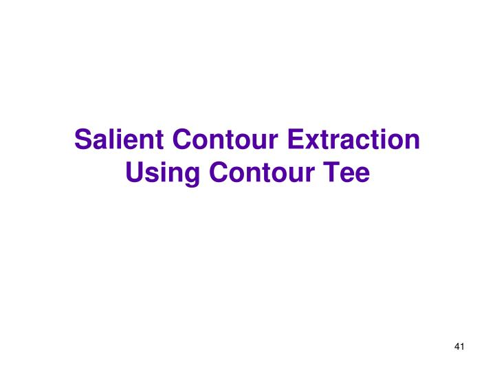 Salient Contour Extraction