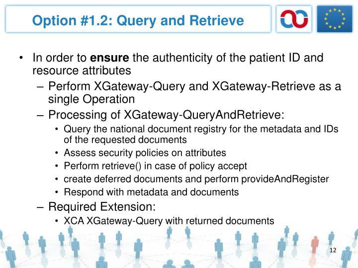 Option #1.2: Query and Retrieve