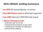 ncds ungass building momentum