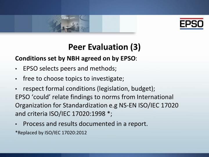 Peer Evaluation (3)