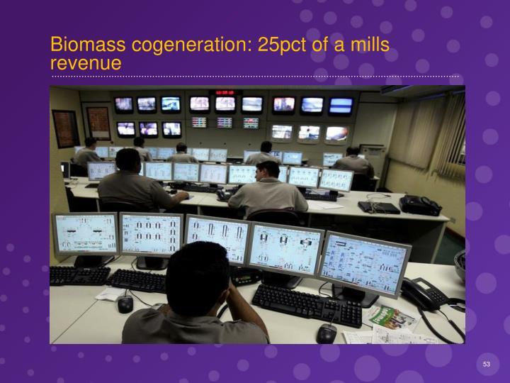 Biomass cogeneration: 25pct of a mills revenue