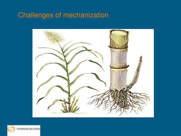 Challenges of mechanization