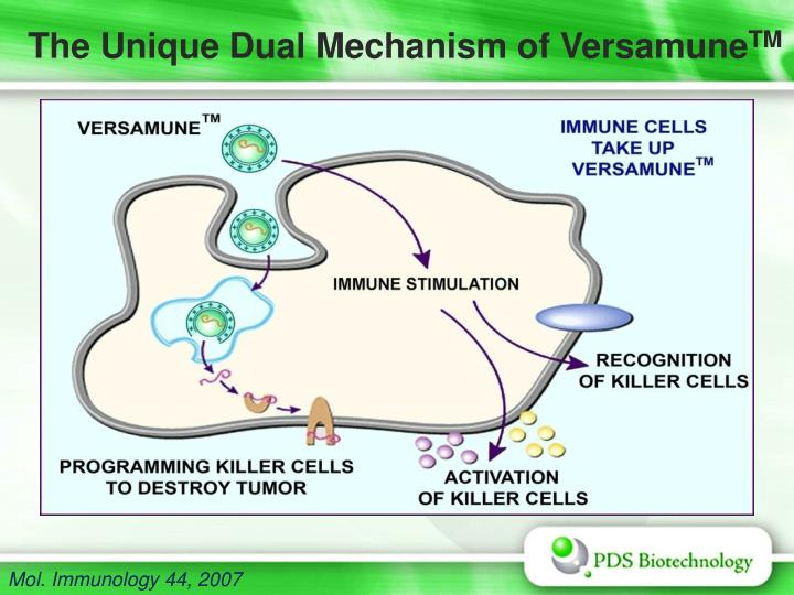 The Unique Dual Mechanism of Versamune