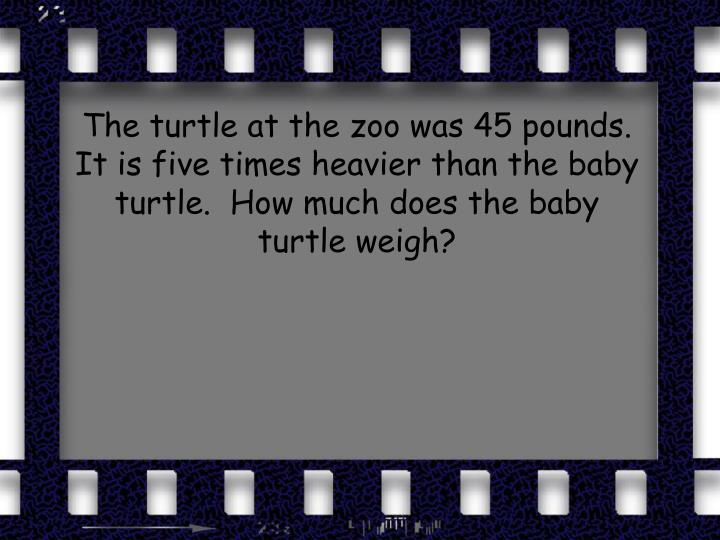 The turtle at the zoo was 45 pounds.  It is five times heavier than the baby turtle.  How much does the baby turtle weigh?