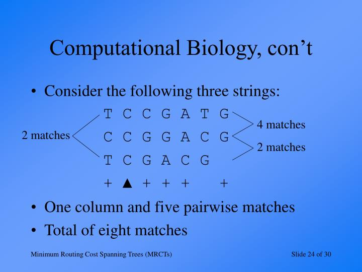 Computational Biology, con't