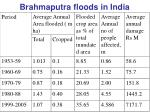 brahmaputra floods in india