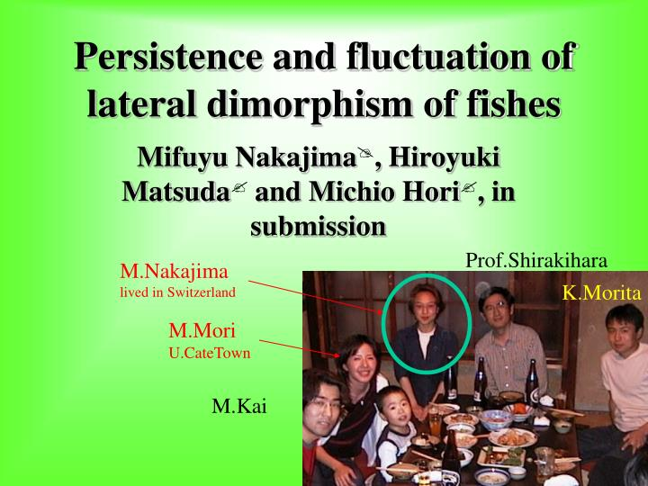 persistence and fluctuation of lateral dimorphism of fishes n.
