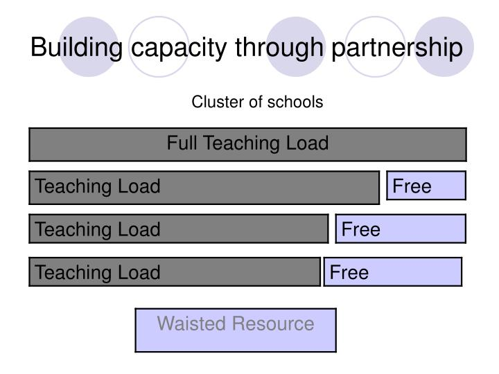 Building capacity through partnership