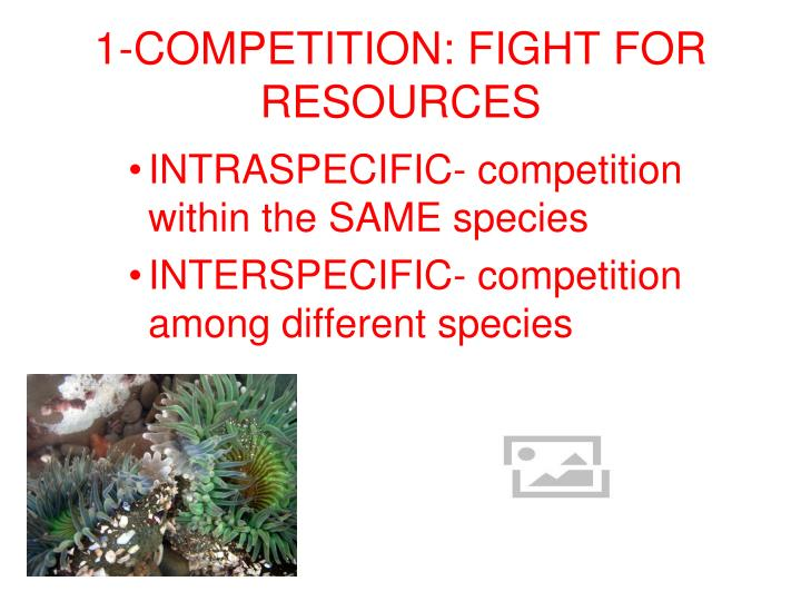 1-COMPETITION: FIGHT FOR RESOURCES