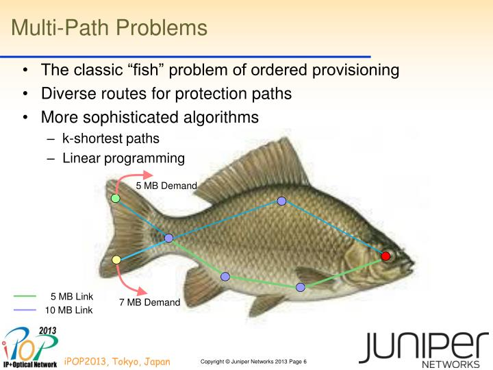 Multi-Path Problems