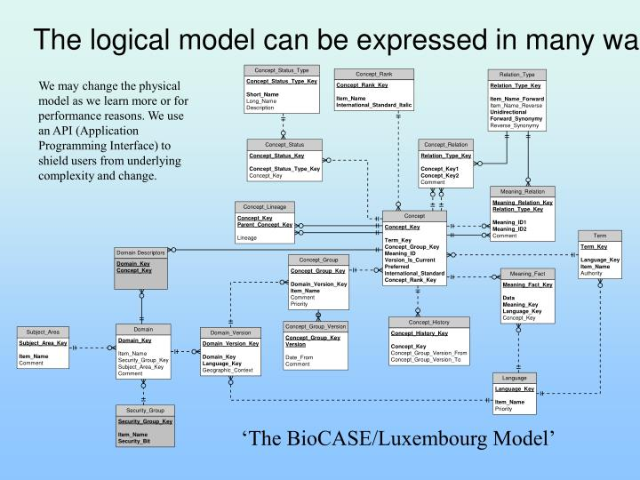 The logical model can be expressed in many ways