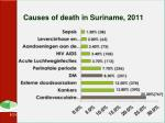 causes of death in suriname 2011