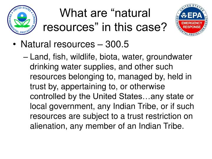 What are natural resources in this case