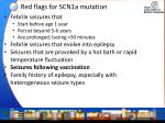 red flags for scn1a mutation