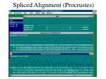 spliced alignment procrustes1
