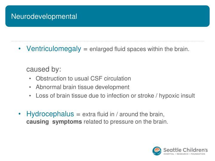 Neurodevelopmental